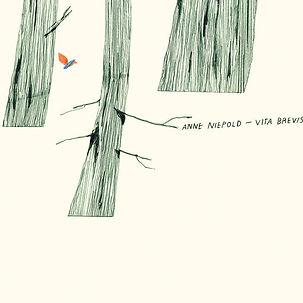 ANNE NIEPOLD_Vita Brevis_COVER.jpg