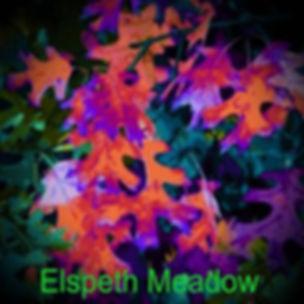 ELSPETH MEADOW_cover.jpg