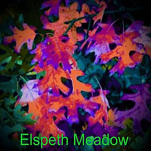 ELSPETH MEADOW_cover.jpg