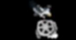 thunderbayfilmsociety_logo.png