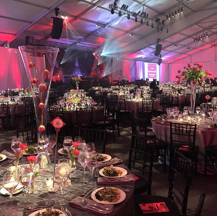 Temple Health's 125th Anniversary Acres of Diamonds Gala