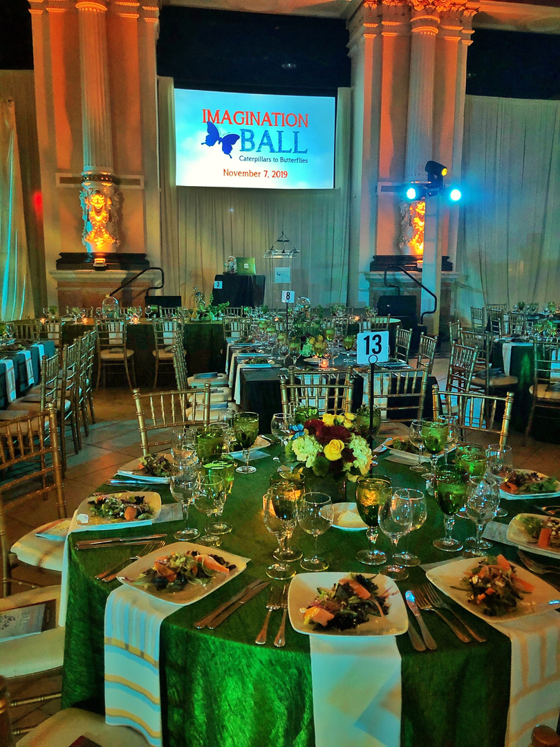 Imagination Ball (Annual)