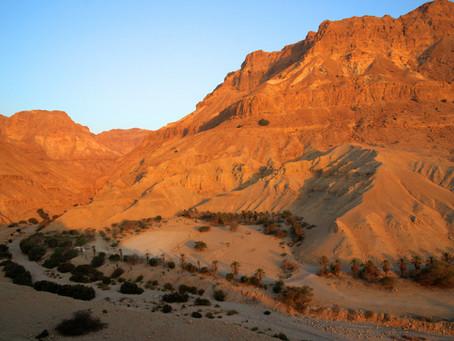 Ein Gedi Naturreservat am Toten Meer