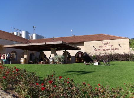Golan Höhen Tourismus erwacht aus Covid Schlaf