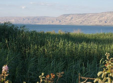 Wasserpegel des See Genezareth in Israel erreicht Höchststand