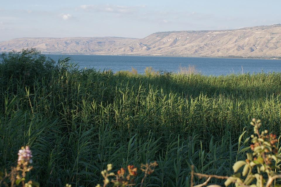 Der Pegel des See Genezareths liegt derzeit 12 Zentimeter von seinem Höchststand von 208,80 Metern unter dem Meeresspiegel entfernt, berichtet die israelische Wasserbehörde.