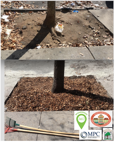 Clean Street Project 2021 pic3.png