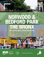 Norwood & Bedford Park commercial district needs assessment