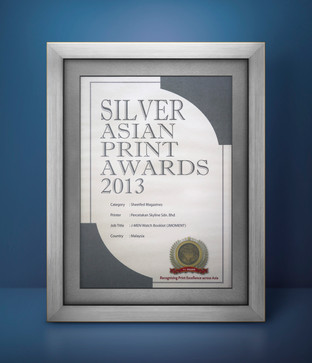 2013 Silver.jpg