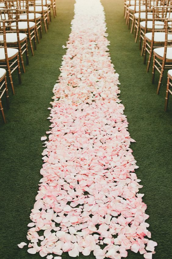 biodegradable petals,