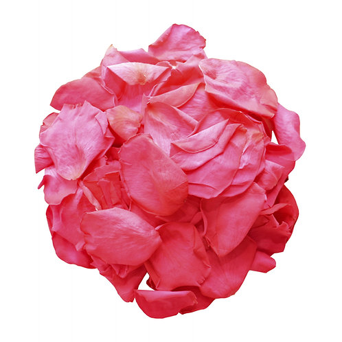 Cerise Rose Petals
