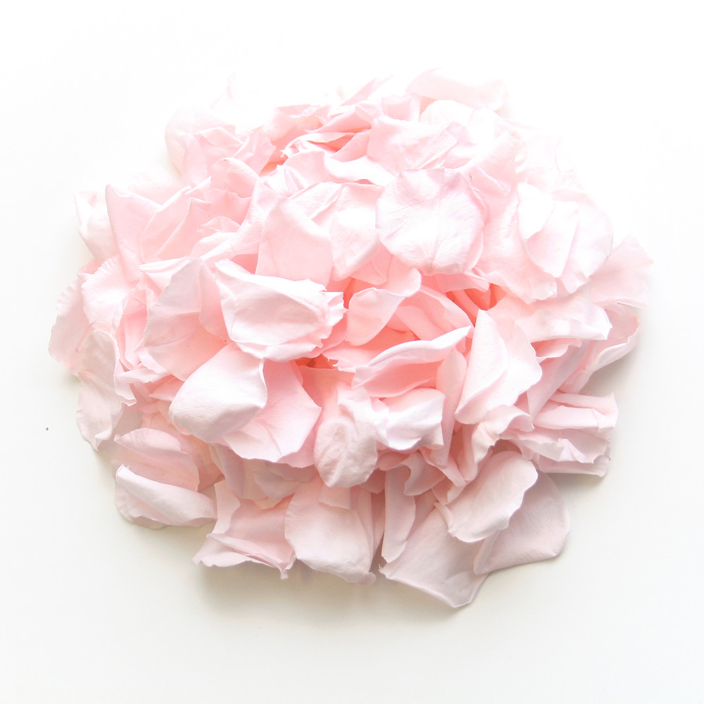 biodegradable wedding confetti, wedding confetti, confetti, petite roses, rose petals, roses, throwing confetti, wedding confetti, roses for confetti, confetti rose, confetti, pink rose, pink roses