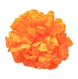 orange 1 copy.jpg