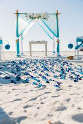 Blue Rose Petal Beach Aisle