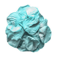 Preserved Turquoise Rose Petals