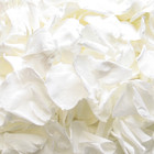 biodegradable petals, biodegradable wedding confetti, biodegradable confetti, biodegradable petals for confetti, confetti, wedding confetti, confetti, wedding confetti petals, wedding confetti, aisle or walkway decor, aisle or walkway decor petals, petals for walkway decor, rose petals, rose petals for decor, rose petals for throwing, eco friendly confetti, eco friendly wedding confetti,  white roses, white rose petals