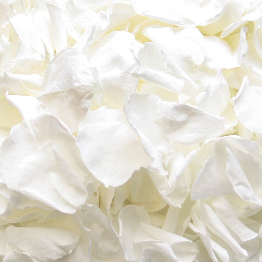 White Petite Rose Petals for Wedding Confetti
