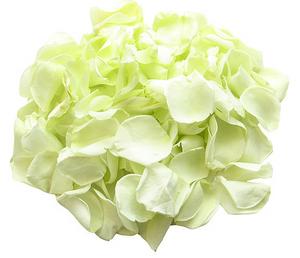 rose petal decor, decor, decor ideas, green roses, green rose petals,  wedding decor ideas, ideas for wedding decor, aisle decor, aisle decoration, aisle decoration