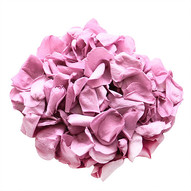 Lavender Rose Wedding Aisle Petals