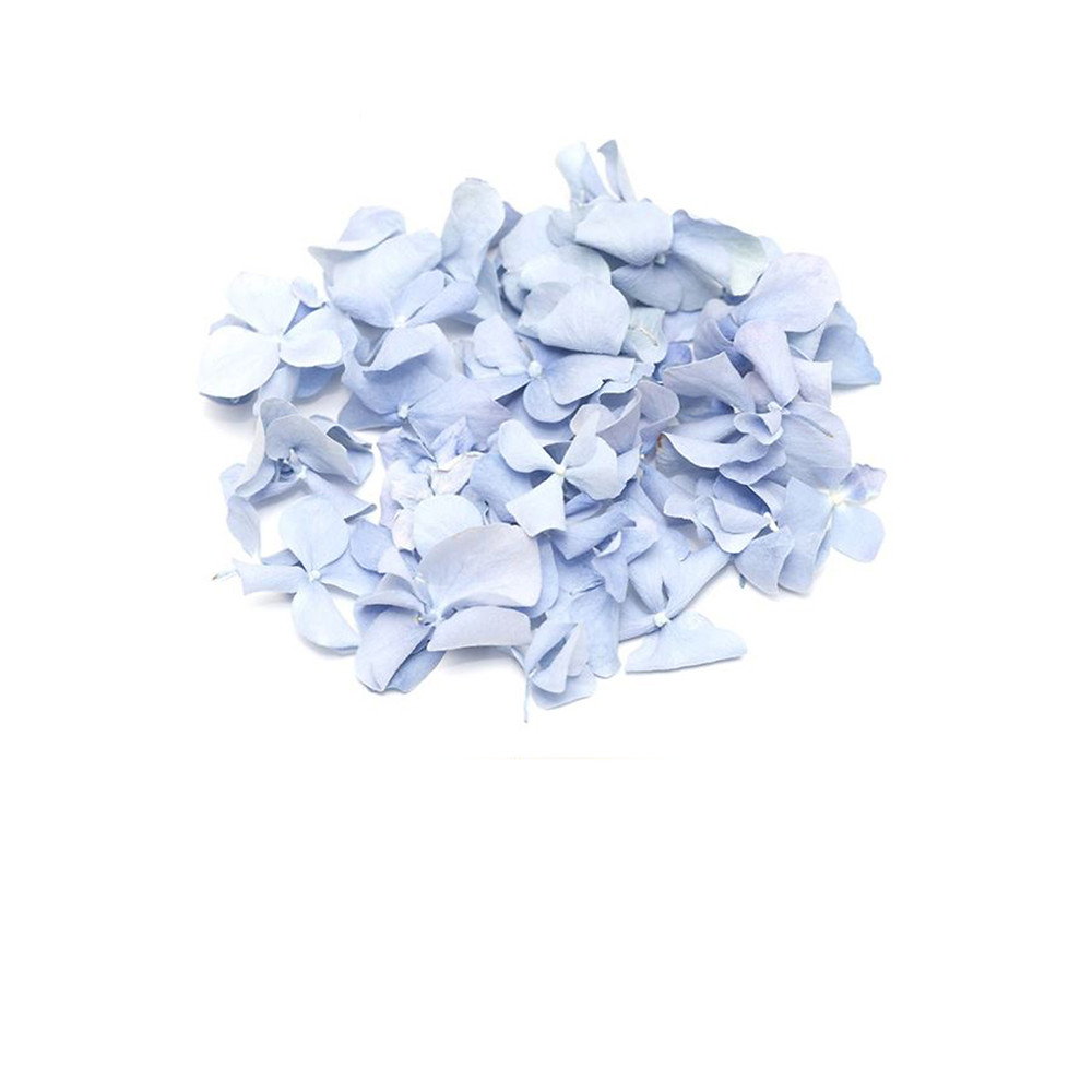 biodegradable wedding confetti, biodegradable confetti, biodegradable petals, wedding confetti, confetti, wedding confetti, confetti petals, wedding confetti, confetti petals, biodegradable petals, aisle walkway, aisle decor, wedding decor, decor, confetti petals, confetti, wedding confetti, petals, wedding confetti, confetti