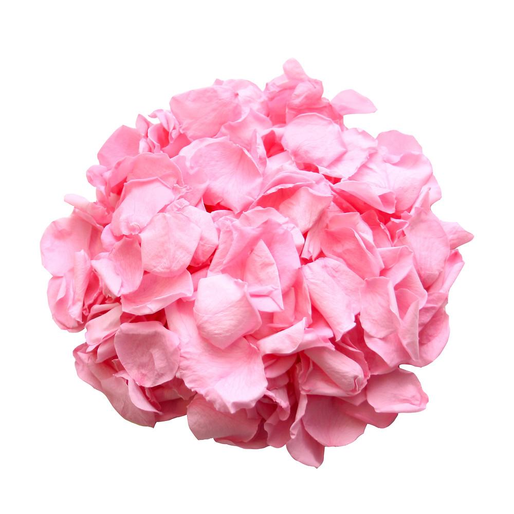 wedding decor, decor for weddings, wedding decoration, decoration for weddings, wedding decor decor ideas rose petals, rose petals, rose petal decor, decor ideas, ideas for wedding decor, biodegradable rose petals, biodegradable roses,