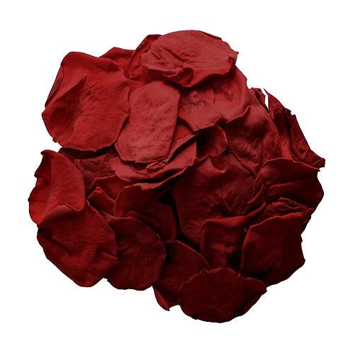 Dark Red Rose Petals