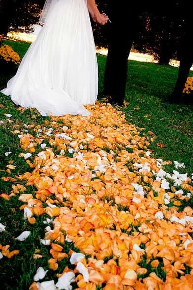 rose petal decor, decor, decor ideas, orange roses, orange rose petals,  wedding decor ideas, ideas for wedding decor, aisle decor, aisle decoration, aisle decoration