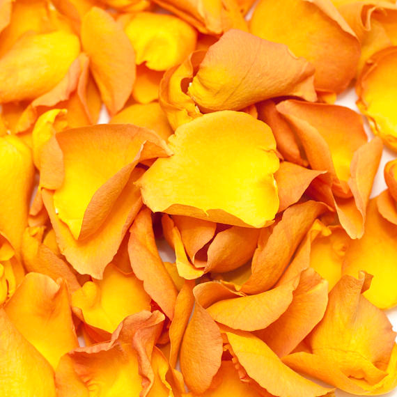 biodegradable confetti, biodegradable wedding confetti, biodegradable petals, wedding confetti, wedding petals, confetti, wedding confetti petals, confetti, eco friendly confetti, eco friendly petals, eco friendly wedding confetti, biodegradable, confetti, wedding, rose petals, golden rose petals, rose petals for confetti,