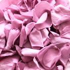 biodegradable petals, biodegradable confetti, biodegradable wedding confetti biodegradable confetti petals, biodegradable petals for confetti, biodegradable petals, biodegradable confetti petals, wedding confetti, confetti, ,wedding confetti petals, petals for confetti, confetti petals, wedding confetti petals, confetti petals, biodegradable confetti, eco friendly confetti, eco friendly confetti petals, wedding confetti petals, confetti petals, wedding confetti, confetti petals, wedding confetti petals, wedding bouquet, bouquet, rose petals, biodegradable petals, biodegradable rose petals, rose petals, real confetti,  real petal confetti, real petals for confetti