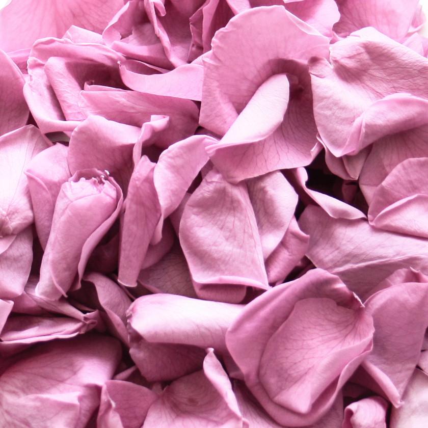 biodegradable wedding confetti, biodegradable petals, biodegradable confetti, biodegradable wedding confetti petals, biodegradable confetti, wedding confetti, wedding confetti petals, confetti petals, wedding confetti petals, confetti, confetti petals, eco friendly confetti, eco friendly wedding confetti, eco friendly petals, eco friendly wedding petals, bath bombs, petals for bath bombs, proposal ideas, proposal, wedding confetti