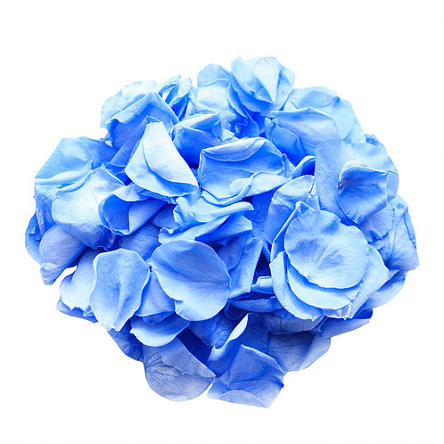 rose petal decor, decor, decor ideas, blue roses, blue rose petals,  wedding decor ideas, ideas for wedding decor, aisle decor, aisle decoration, aisle decoration