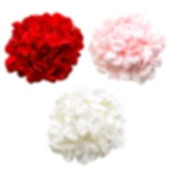 small size petals.jpg