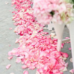 Pink And Ivory Aisle