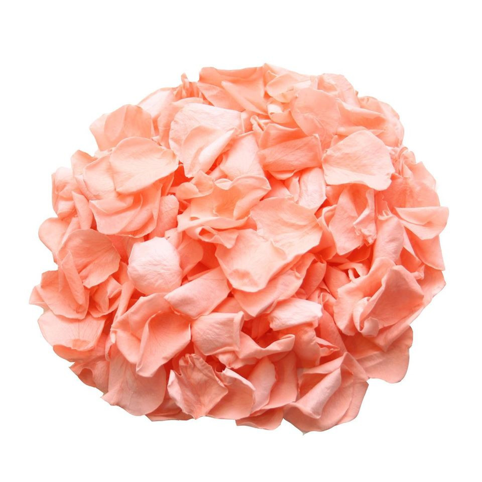 Coral Preserved Wedding Petals