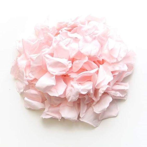 rose petal decor, decor, decor ideas, pale pink roses, pale pink rose petals,  wedding decor ideas, ideas for wedding decor, aisle decor, aisle decoration, aisle decoration