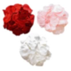 medium size petals.jpg