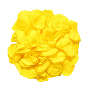 Preserved Yellow Rose Petal
