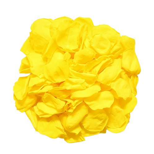 Yellow Rose Petals for Wedding decor