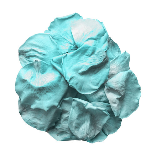 TURQUOISE ROSE PETALS - LARGE
