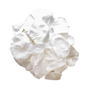 Preserved White Rose Petals