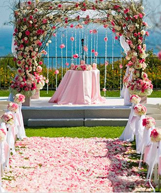biodegradable petals, biodegradable confetti, biodegradable wedding confetti, biodegradable wedding confetti petals, biodegradable confetti, confetti petals, wedding confetti, confetti petals, biodegradable petals, wedding confetti, confetti petals, wedding confetti petals, confetti, wedding confetti, confetti petals, petals for confetti, petals for walkway, walkway decor, eco friendly confetti, eco friendly petals