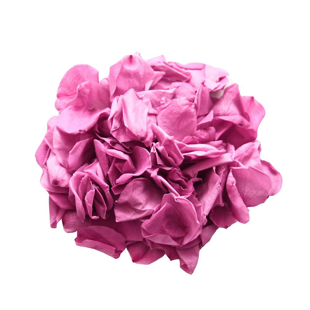 Cerise Wedding Rose Petals
