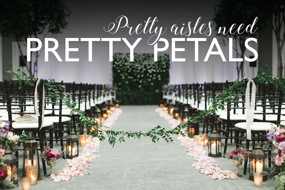 walkway decor, walkway, decor, wedding decor, decor idea, wedding ideas, wedding decor ideas, wedding decor, decor ideas, wedding decor, decor, aisle decoration, decor ideas, wedding decor ideas, wedding decor, rose petals, white rose petals, white roses, white roses, white rose petals, rose petals, roses, pink rose petals, pink roses