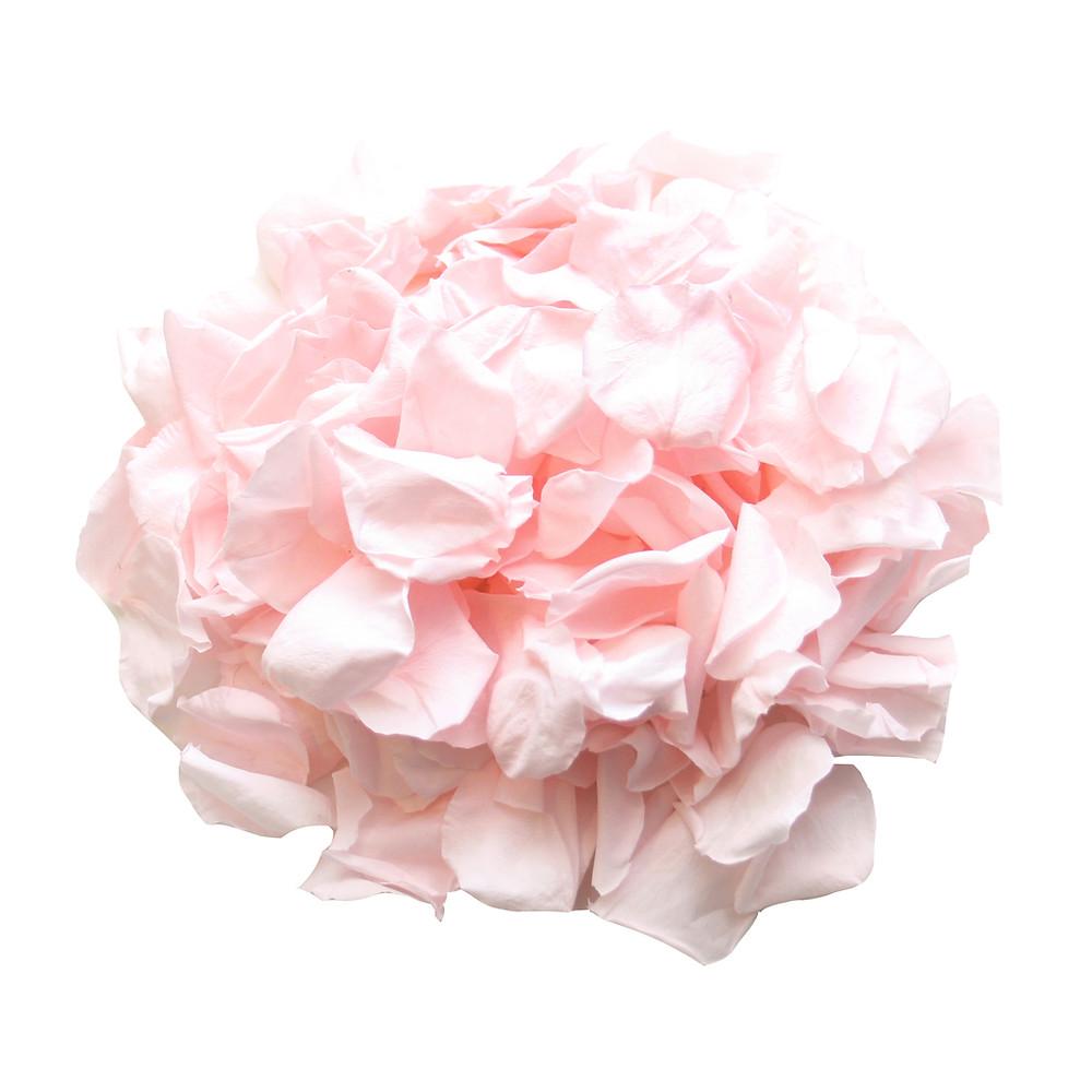 wedding confetti, confetti petals, wedding confetti petals, biodegradable wedding confetti petals, wedding confetti, biodegradable confetti petals, wedding confetti, biodegradable petals, rose petals. biodegradable rose petals, aisle decor, wedding aisle decor, petals for aisle decor, aisle decor petals, wedding decor petals, biodegradable wedding confetti petals, wedding confetti, confetti, roses, eco friendly wedding, eco friendly confetti, wedding confetti eco friendly
