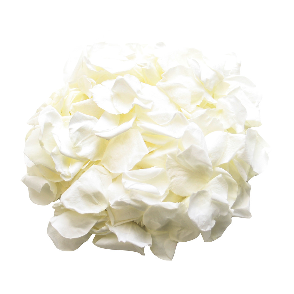 roses, rose petals, rose petal decor, decor for roses, rose petal decoration, aisle decor, aisle decor idea, ivory rose petals, ivory wedding ideas, ivory aisle decor, ivory roses, rose petals, roses, forever roses