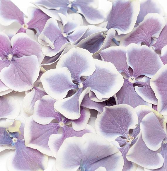 biodegradable petals, purple petals, wedding confetti, confetti, wedding decor, confetti petals, petals, wedding, wedding day