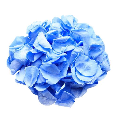 MARINE BLUE ROSE PETALS