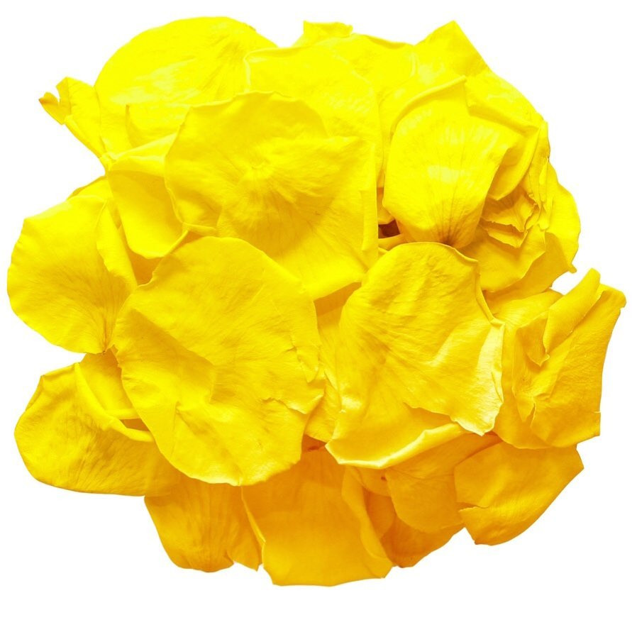 wedding confetti, confetti, wedding confetti petals, confetti petals, wedding confetti petals, wedding aisle decor, aisle decor, walkway ideas, walkway decor, walkway, yellow petals, rose petals