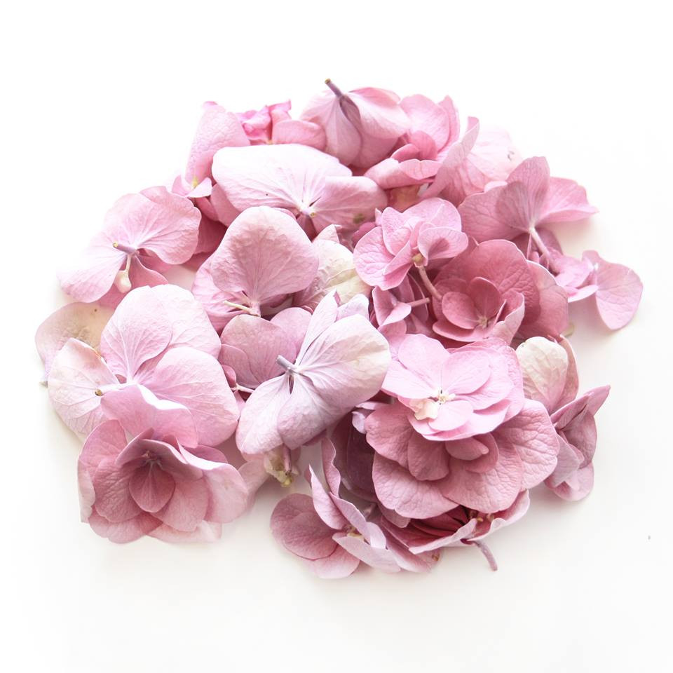 Pink hydrangea double hydrangea wedding decor confetti wedding confetti wedding decoration aisle decoration wedding table wedding table decor aisle decoration walkway wedding ideas wedding inspo wedding inspiration