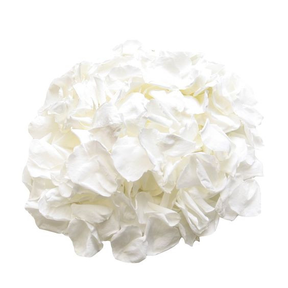 Biodegradable Rose Petals